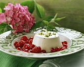 Panna cotta with redcurrant and raspberry salad