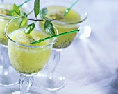 Kiwi shake with melon ice cream
