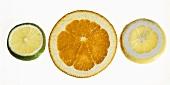 Slices of orange, lemon and lime on sheet of glass