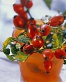 A Pot of Rose-hip Berries