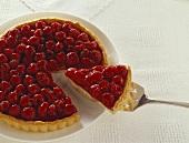 Raspberry tart, one piece on server