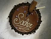 Sacher torte decorated with candied violets