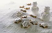 Cinnamon stars lying on icing sugar mountain