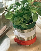 Food tin with bunch of basil & decorated with ribbons