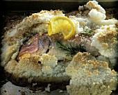 Sea bream in salt crust