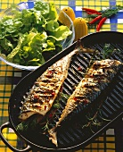 Barbecued mackerel with herbs