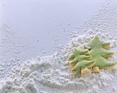 Fir tree biscuits in icing sugar snow