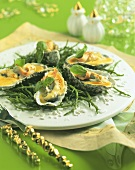 Gratin of oysters on samphire