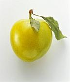 Eine gelbe Pflaume