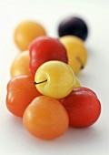 Pflaumen in verschiedenen Farben