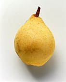 A yellow pear (Gellerts Butterbirne)