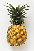 A baby pineapple