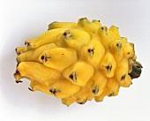 Yellow Pitahaya
