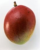 Eine Mango