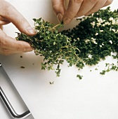 Stripping off cress leaves