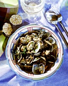 Mussel stew with garlic and herbs