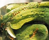 Gherkin Pickles