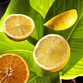 Citrus fruits on banana leaves