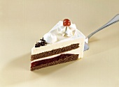 Piece of Black Forest cherry gateau