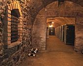 Wine cellar in Erlahof, Spitz an der Donau, Wachau, Austria