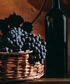 Red wine still life with wine bottle and grapes in basket