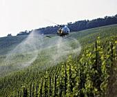 Helicopter spraying in vineyard, Bernkastel-Kues, Mosel