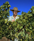 John Brocksopp, vineyard manager of Leeuwin Winery, Australia