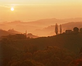 Wine landscape at Gamlitz in Styria, Austria