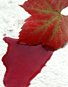 Autumn vine leaf lying in pool of red wine, Pinotage