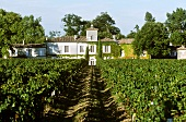 The Chateau Gazin Wine Estate in Pomerol, France