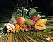 Verschiedenes Obst und Südfrüchte