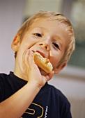 Small boy eating sweet mini-pretzel