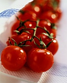Vine tomatoes with drops of water on kitchen paper