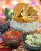 Nachos con Salsa de Guacamole (Mexico)