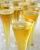 Bellini (champagne with peach juice) in champagne flutes