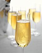 A few champagne glasses