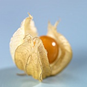 A physalis (cape gooseberry)