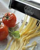Pasta machine with fresh ribbon noodles, tomato & basil