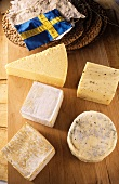Various types of Scandinavian cheese