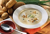 Veloute potato soup with herb croutons and onion tops