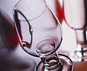 Wine tasting glass from the firm Riedel