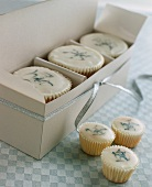 White cup-cakes and petit fours as gifts