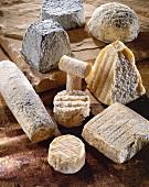 French goat's cheeses (Valencay, Pouligny-Saint-Pierre, Saint-Maure, Crottin, Taupiniere, Pavè etc.)