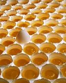 Viele aufgeschlagene Eier, eines davon ganz