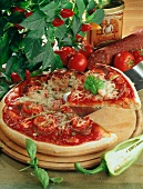 Spicy tomato and sausage pizza