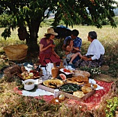 Picnic in open air under cherry tree