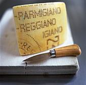 A piece of Parmigiano-Reggiano (Parmesan)