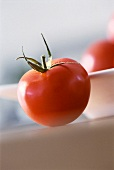 Close Up of Red Tomato
