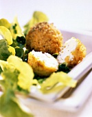 Cheese balls in couscous panade on salad leaves