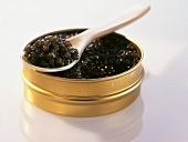 Black caviare in a tin
